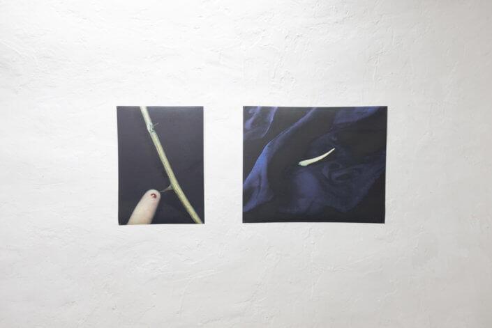 Ten Sea in Nitra gallery