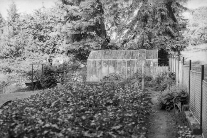 Men in garden